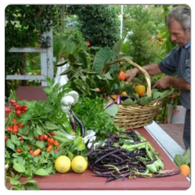 Photo Source: The Italian Garden Project